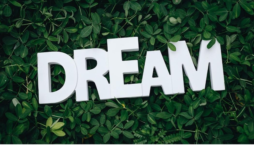 Dream About the Job You Want